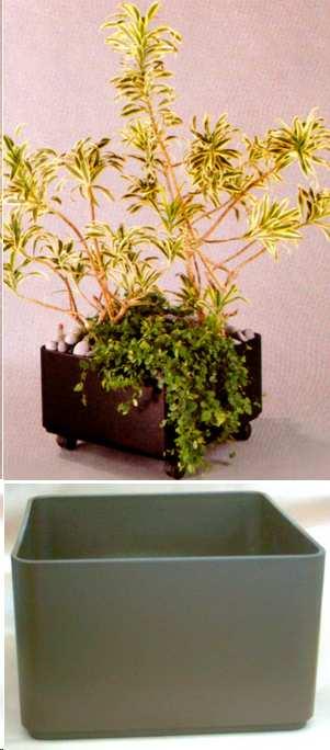 Hydrokultur topf leni 40 x 40 x 25 cm g nstig bei for Hydrokultur shop